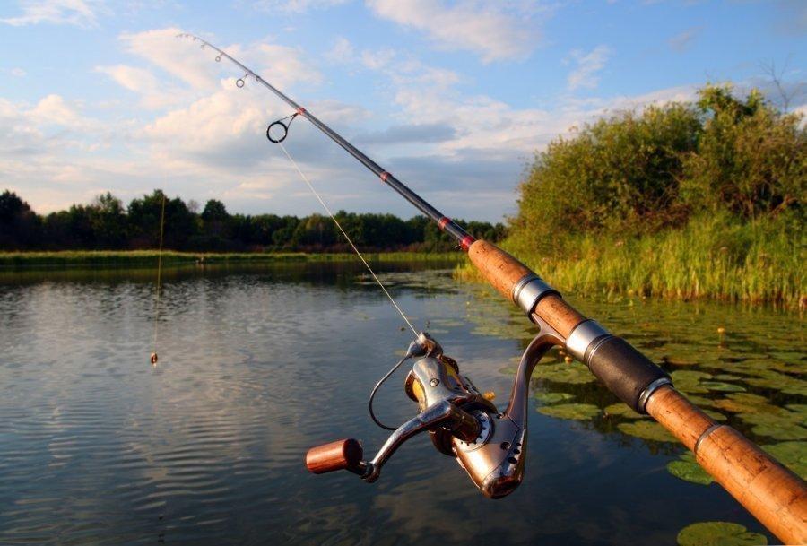 для настоящего рыбака нужна только удочка и река