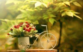 Методика гадания на цветочных лепестках
