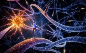 Как научится нейролингвистическому программированию
