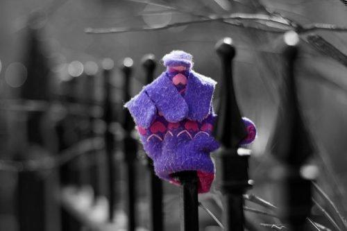 Потерянная перчатка
