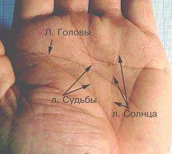 линия аполлона на руке