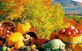 Перечень народных примет на урожай