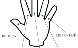 Значение пальцев в хиромантии
