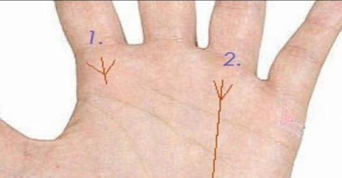 хиромантия знаки на руке