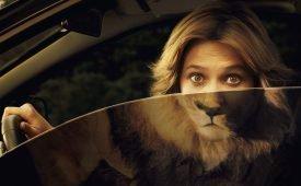 Гороскоп совместимости женщины-Льва