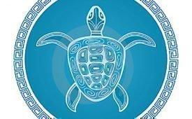 Символом чего по фен-шуй является черепаха?