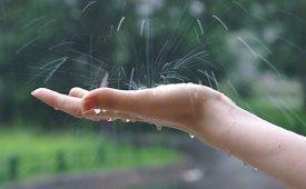 Любовный заговор во время дождя
