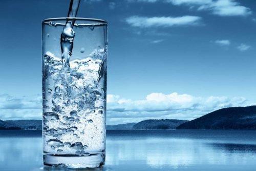 Вода — родительница всего живого на земле.