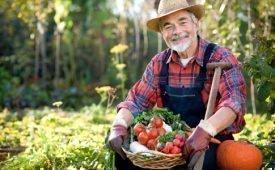 Молитвы на хороший урожай в огороде
