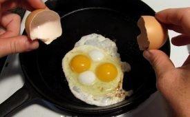 Что предвещает двойной желток в яйце