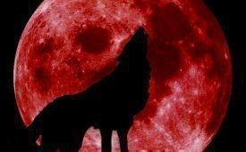 Приметы о кровавой луне