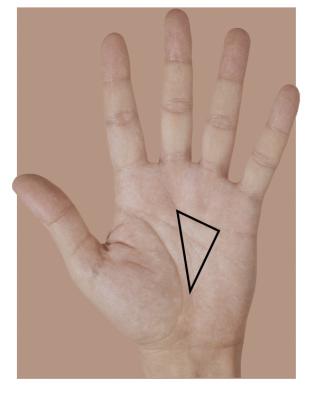 денежный треугольник на ладони