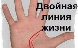 Значение двойной линии Жизни