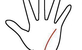 Значение линии Здоровья на руке