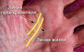 Значение на руке линии Ангела-хранителя