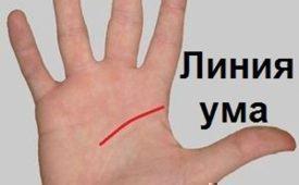 Значение разрыва на линии Ума