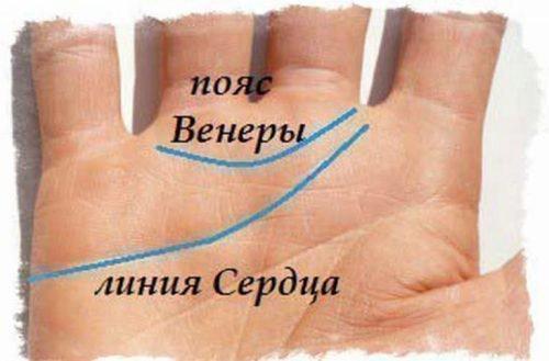 значение на руке пояс венеры