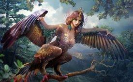 Легенды о птицах Гамаюн, Сирин и Алконост