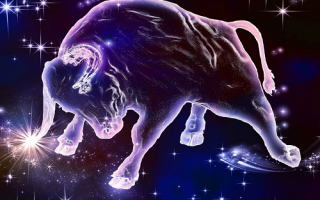 Совместимость Тельца с другими знаками зодиака